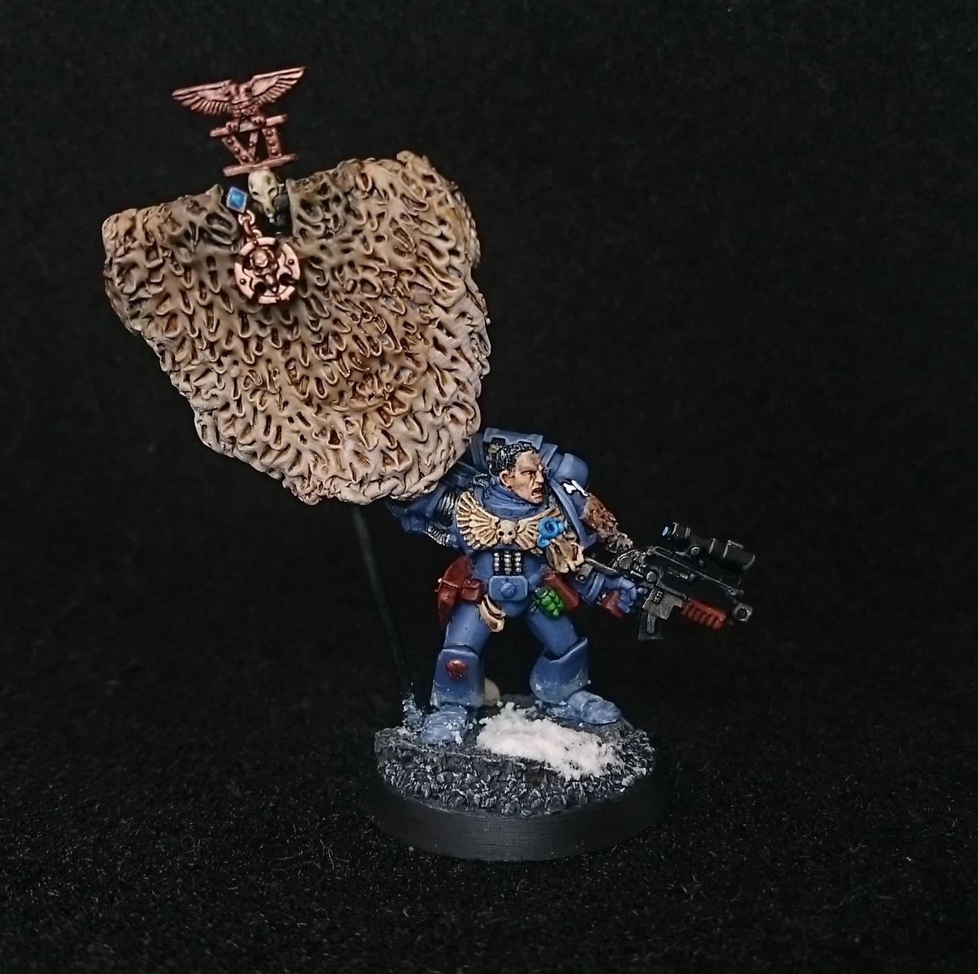 Space Wolves De Meliador Grey Hunters Et Wolf Guard