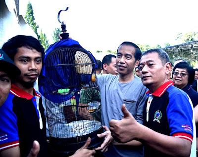 Presiden Jokowi Apresiasi Penangkar Burung - Info Presiden Jokowi Dan Pemerintah