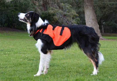 Protective high visibility safety vest for dogs
