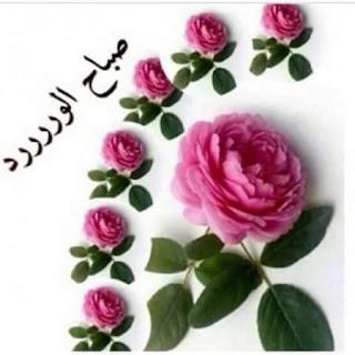 صباح الخير , صور صباح الورد , صور مكتوب عليها صباح الخير