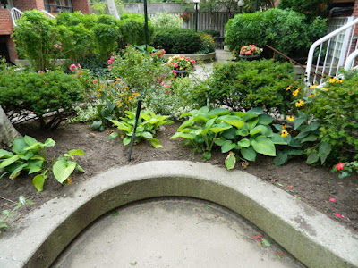 By Paul Jung Gardening Services--a Toronto Organic Gardening Company Garden District Toronto Downtown Cleanup After