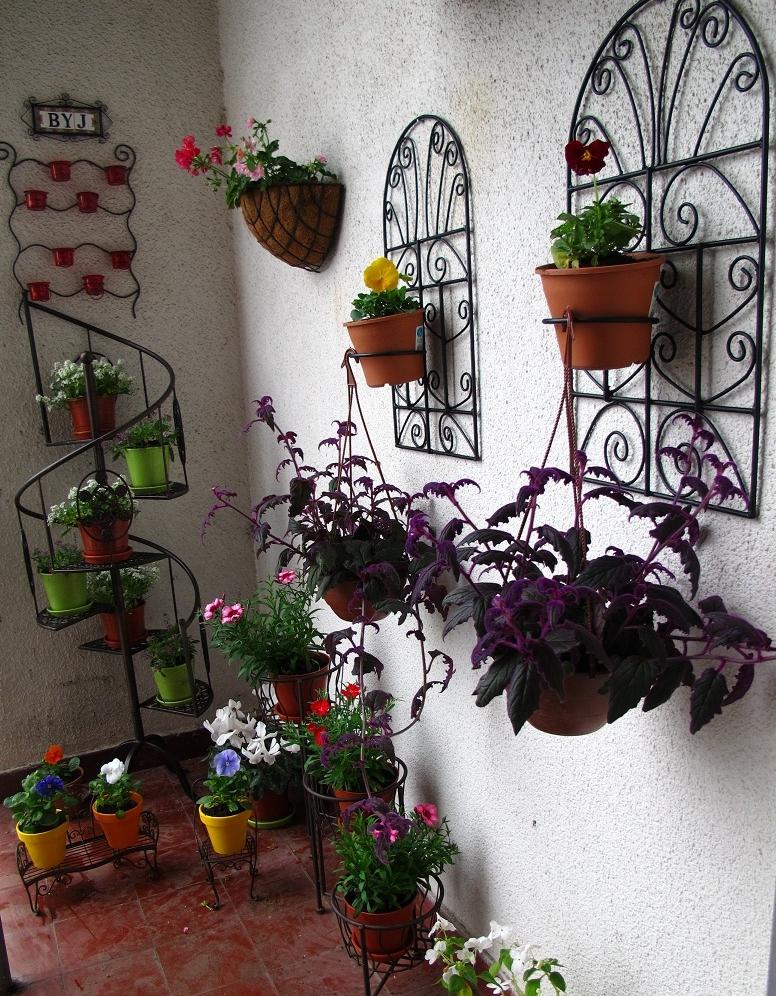 Maceteros para colgar en paredes fabulous decoracin - Macetas para colgar ...