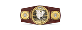 WWF NXT North American title belt championship design