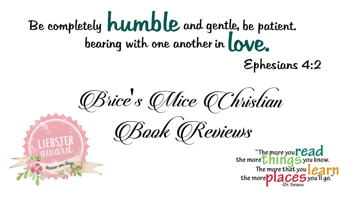 Brice's Mice Christian Book Reviews