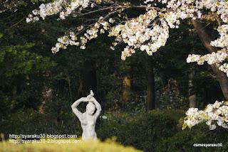 桜と女神像の写真
