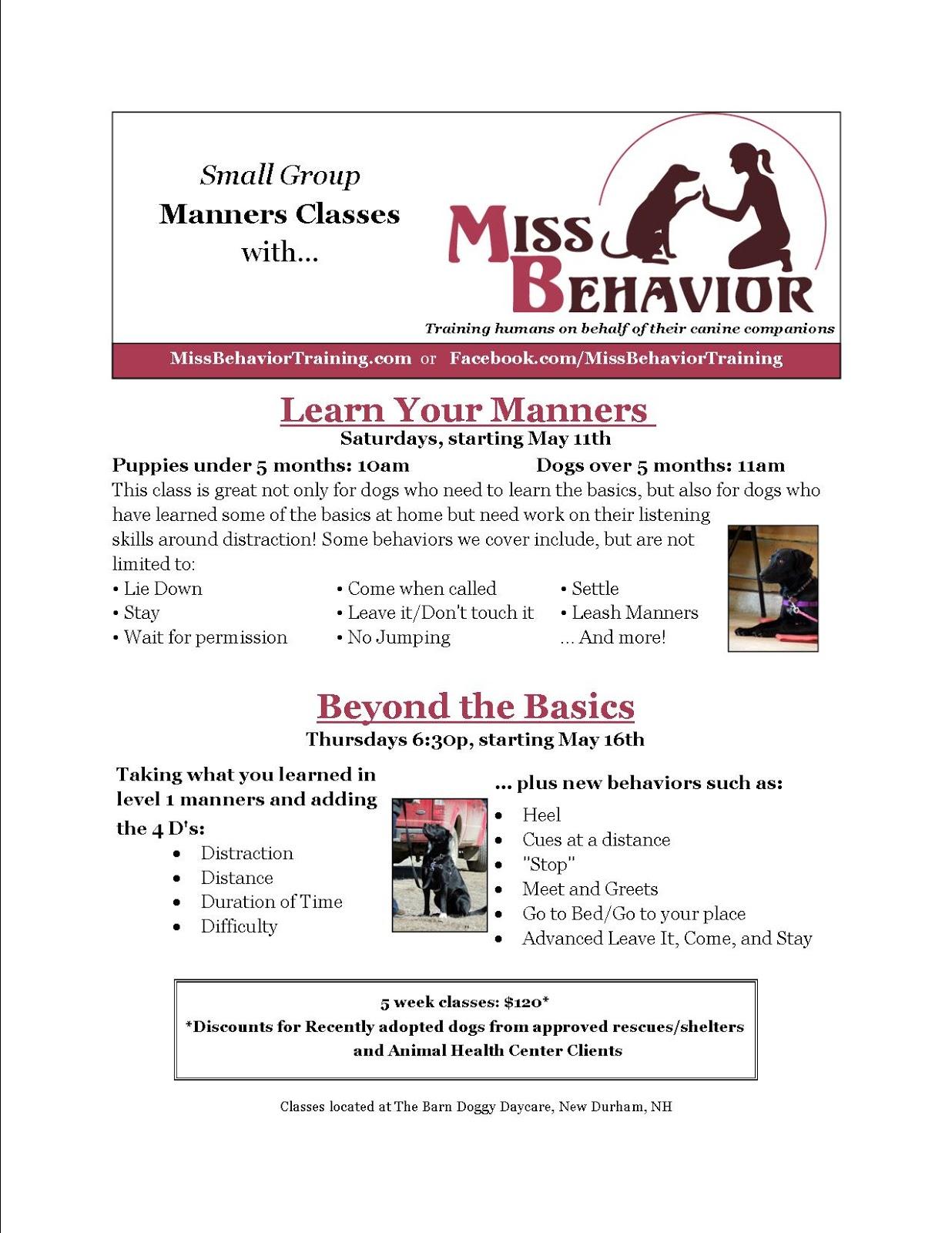 Miss Behavior S Blog