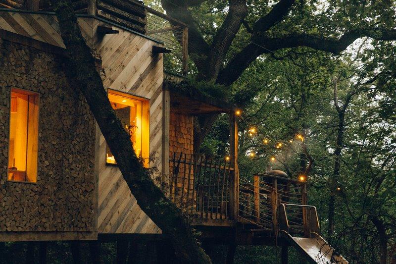 The Woodsman's Treehouse - Dorset,