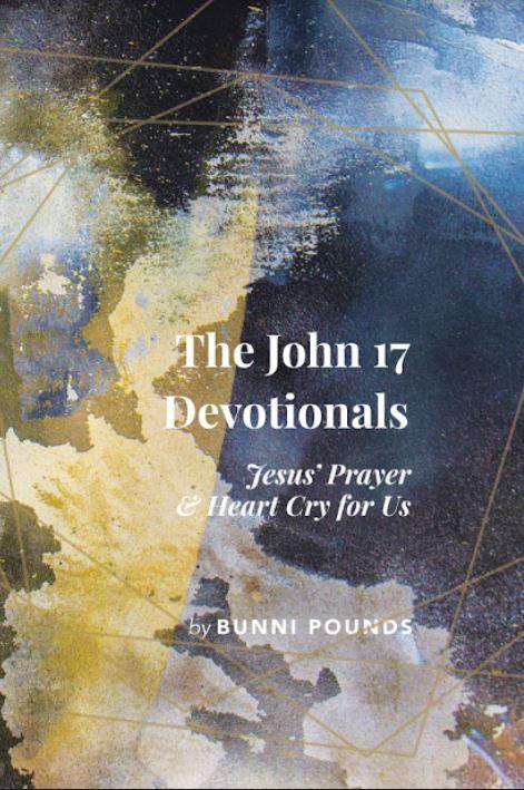 Politics, Jesus, and Destiny: December 2018
