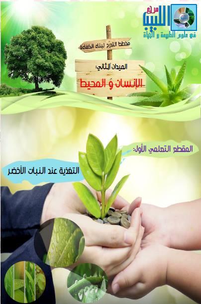 مخطط تدرج بناء كفاءة لمقطع التغذية عند البات