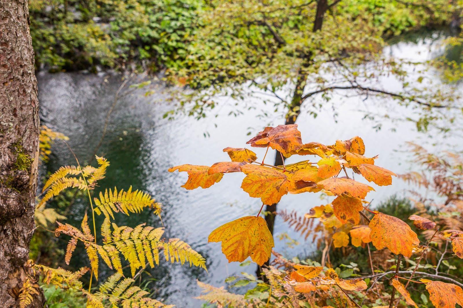 Parc Plitvice Croatie automne