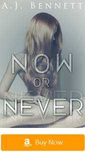 Now or Never - Erotic Romance Novels