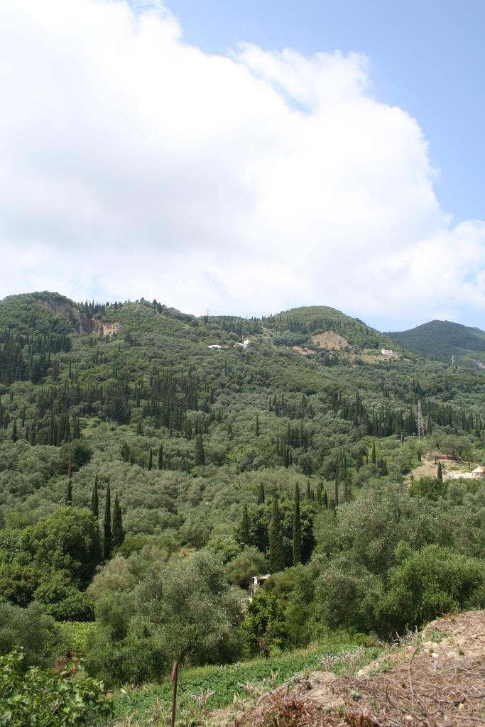 Het uitzicht vanaf het Achillion