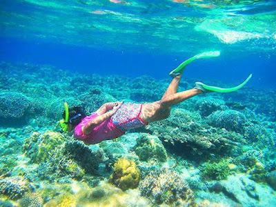 Keindahan bawah laut menjangan