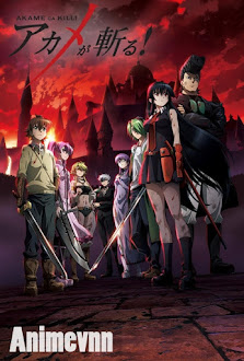 Akame Ga Kill! - Red Eyes Sword 2014 Poster