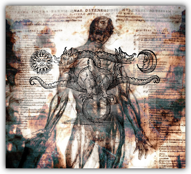 Alchemical Symbols over Anatomical Drawing