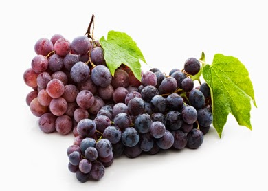 but especially in the skin of blue grapes  Resveratrol Health Benefits
