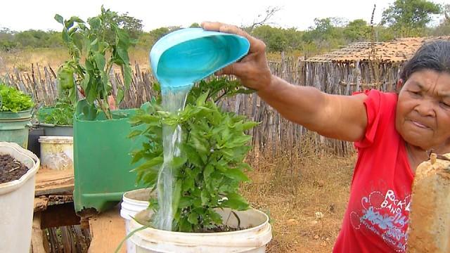 Com fim de seca, agricultores do RN voltam a plantar após período chuvoso