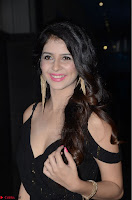 Kashish Vohra at Rogue Movie Audio Launch ~  (23).JPG