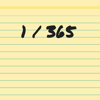 365 dagen bloggen
