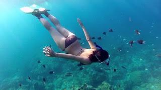 snorkeling bunaken | wisata bunaken | wisata manado | laut manado | wonderful Indonesia