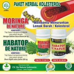 obat kolesterol de nature