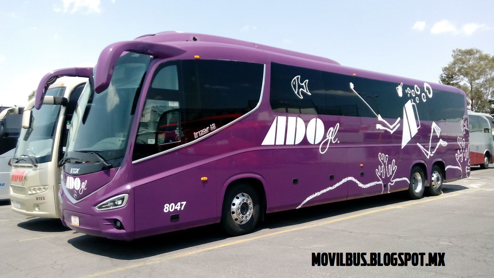 autobús modelo