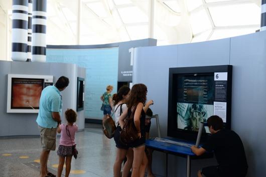 El 'Bosque de Cromosomas' del Museu de les Ciències descubre cómo somos a través de juegos interactivos