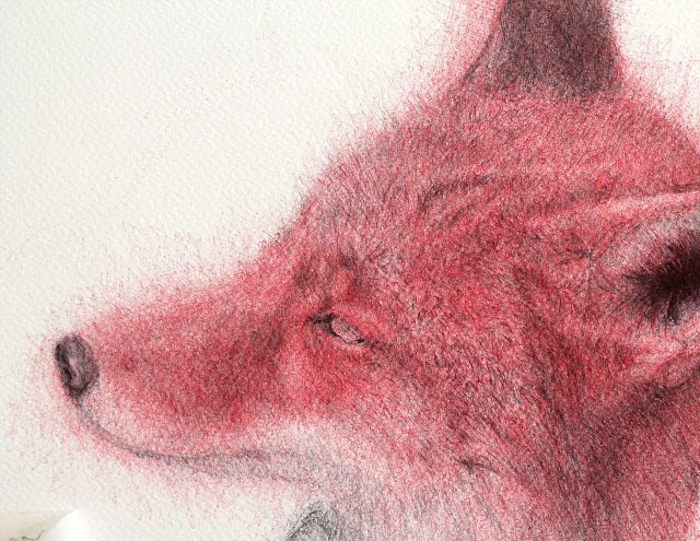 """dibujo"",""draw"",""zorro"",""fox"",""bolígrafo"",""boligrafo"",""pen"",""paper"",""workinprocess"",""trabajando"",""encargo"",""animal"""