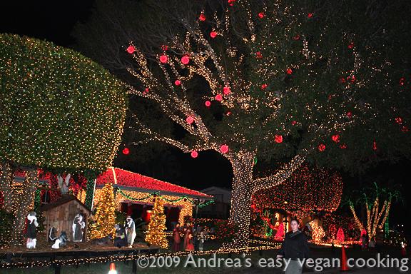 Christmas Lights In Pompano Beach Florida ...