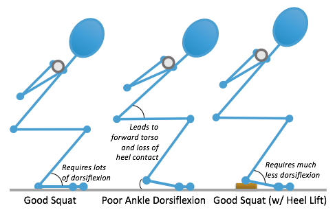 Fitness Pollenator: Which Squat Depth is Best FOR YOU?
