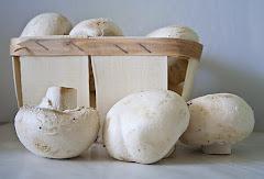 грибное лукошко
