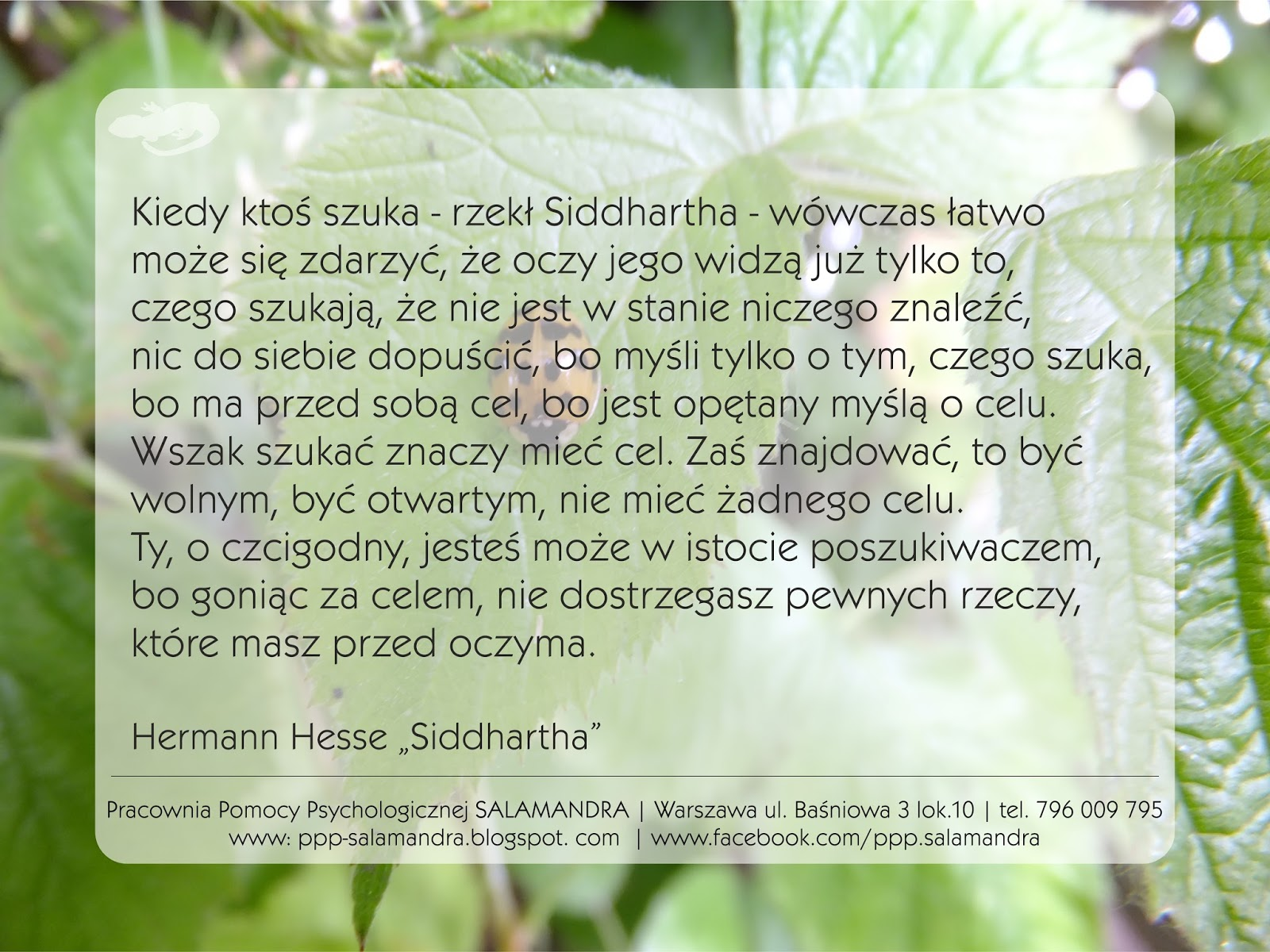 Dobry psycholog Warszawa o szukaniu i znajdowaniu