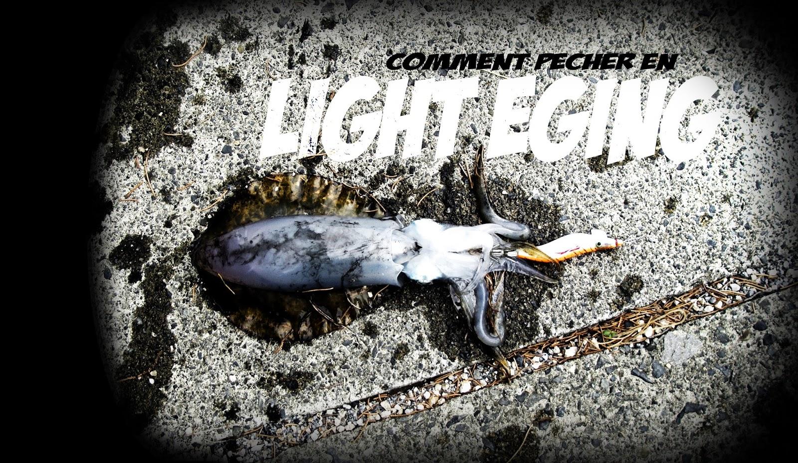 Comment pecher le calamar en light eging peche sans killer - Comment cuisiner les calamars ...