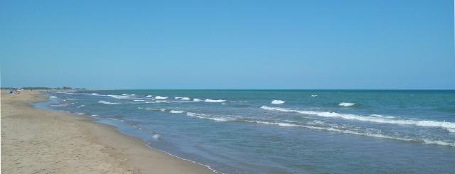 Tarda de platja al Delta