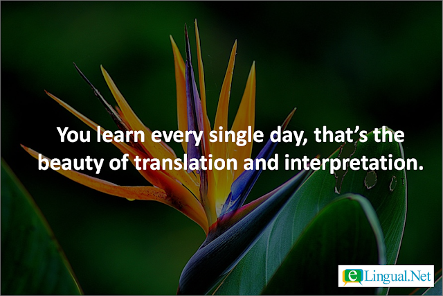 Quotes on Translation and Interpretation | www.elingual.net