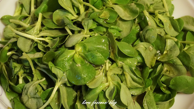 semizotu salata çeşitleri