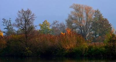 Herbst, autumn, autunno, осень, otoño, automne, mùa thu, 秋, Hösten, восень, vjeshtë, payız, Udazkeneko, jesen, есен, efteråret, sügis, syksy, 가을, φθινόπωρο