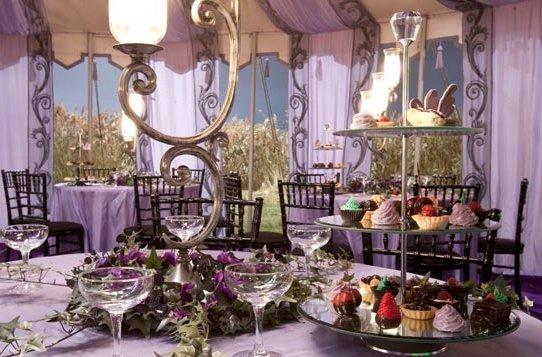 Chiara E Maurizio, Matrimonio Con Lo Sponsor: Harry Potter