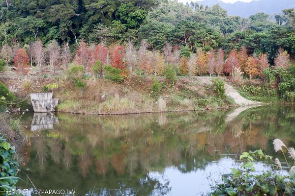 宴山林鴛鴦湖|台中北屯大坑落羽松秘境,上百棵落羽松圍繞湖畔