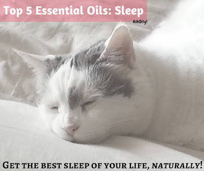 Top 5 essential oils for natural sleep assistance | Hot Pink Crunch