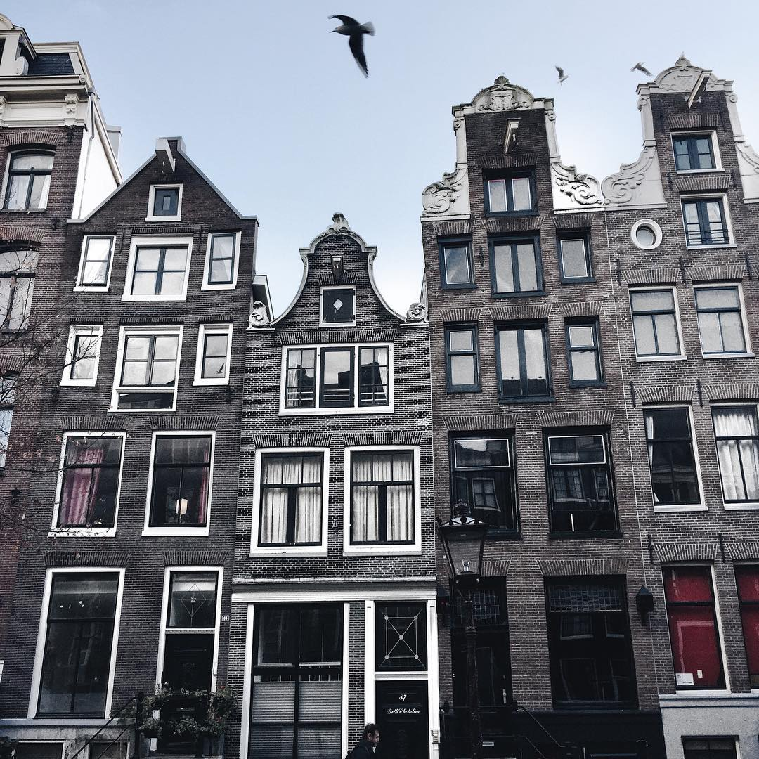 Amsterdam travel, what to see in Amsterdam