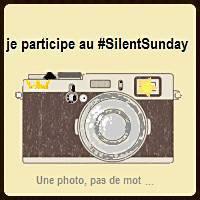 http://www.londrespourlesenfants.com/blog/ma-semaine-instagram/silent-sunday-174.html