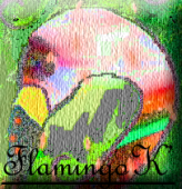 Visit FlamingoK's Blogabout