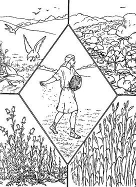 Dibujo de la Parábola del Sembrador para colorear pintar