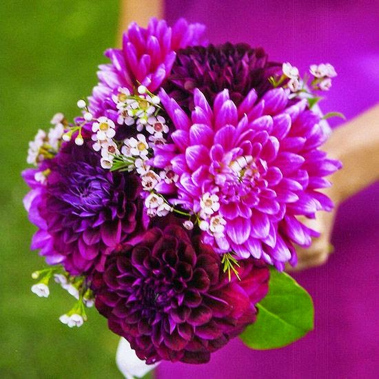 10 Stunning Dahlia Wedding Bouquets: Beautiful Bridal: 15 Breathtaking Dahlia Bouquets