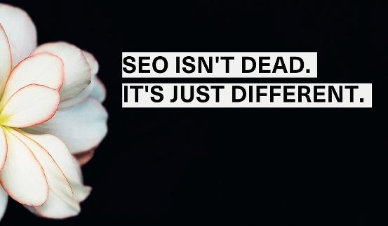 Ada aneka macam praktisi SEO yang kuatir websitenya akan melemah di periode algoritma RankB Apakah SEO Akan Mati Di Era RankBrain Google?