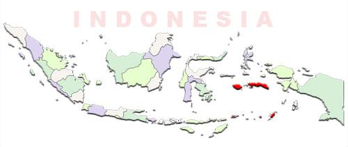image: Maluku map location