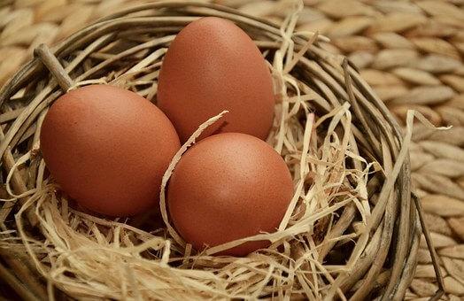 Un huevo de gallina es la nueva estrella de Instagram