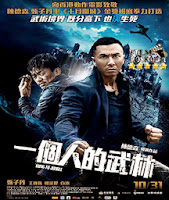Kung Fu Jungle (2014) online y gratis