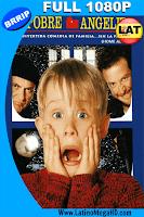 Mi Pobre Angelito (1990) Latino Full HD 1080P - 1990